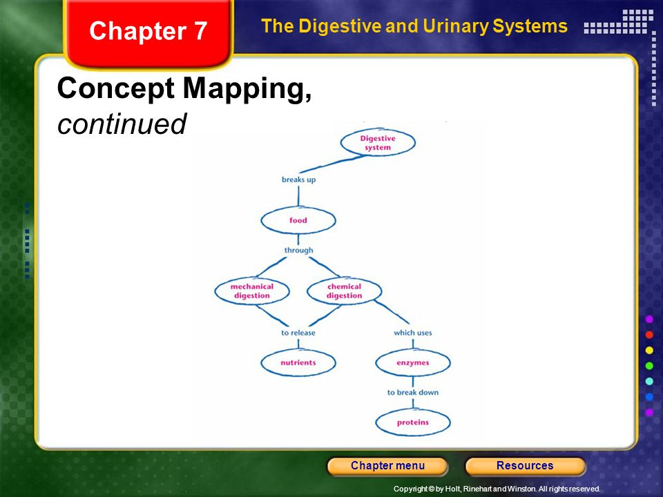 Chapter 7 Section 1 The Digestive System Objectives Ppt Video