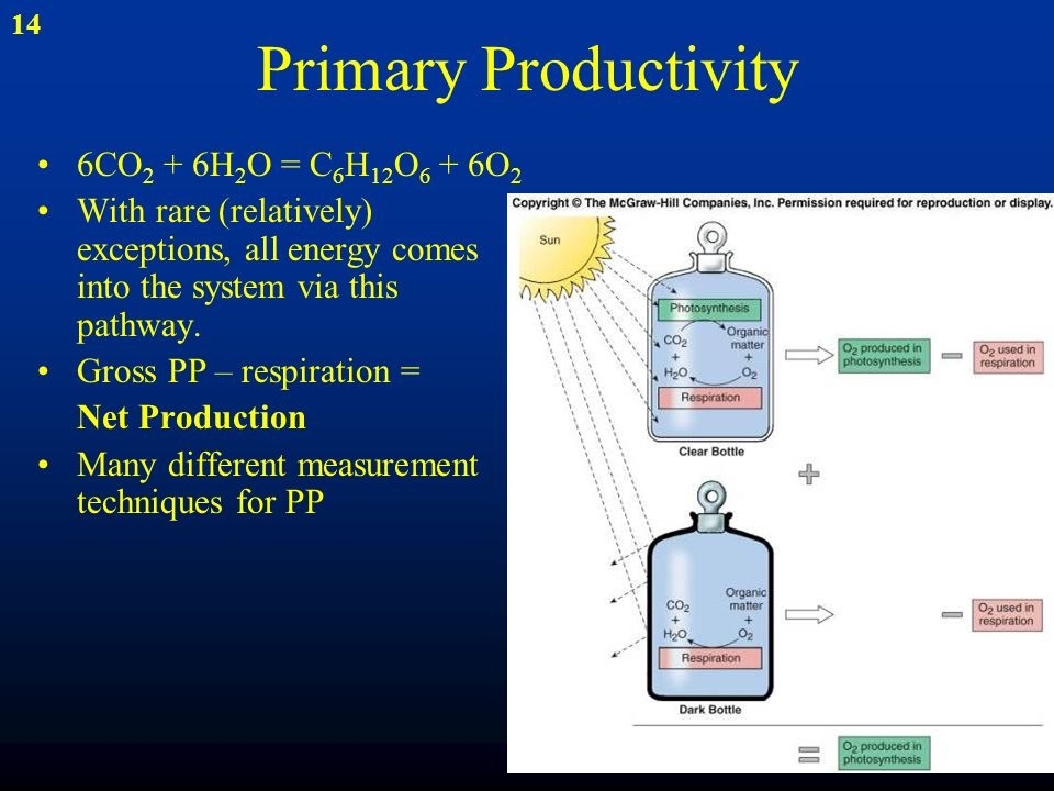 primary production measurement