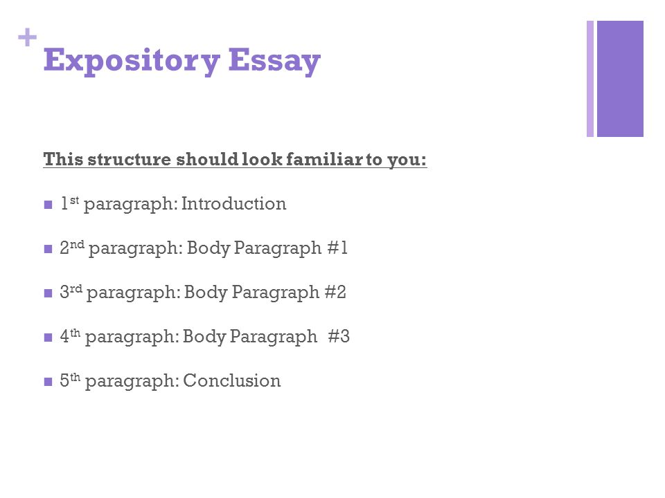 expository essays essay Some expository essays may include an argument, while others are purely informative[1] while it may seem overwhelming, writing an expository essay is easy if you take it one step at a time.
