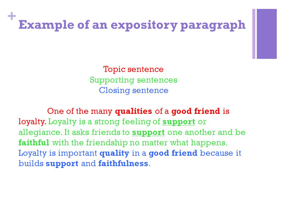 how to write an expository paragraph