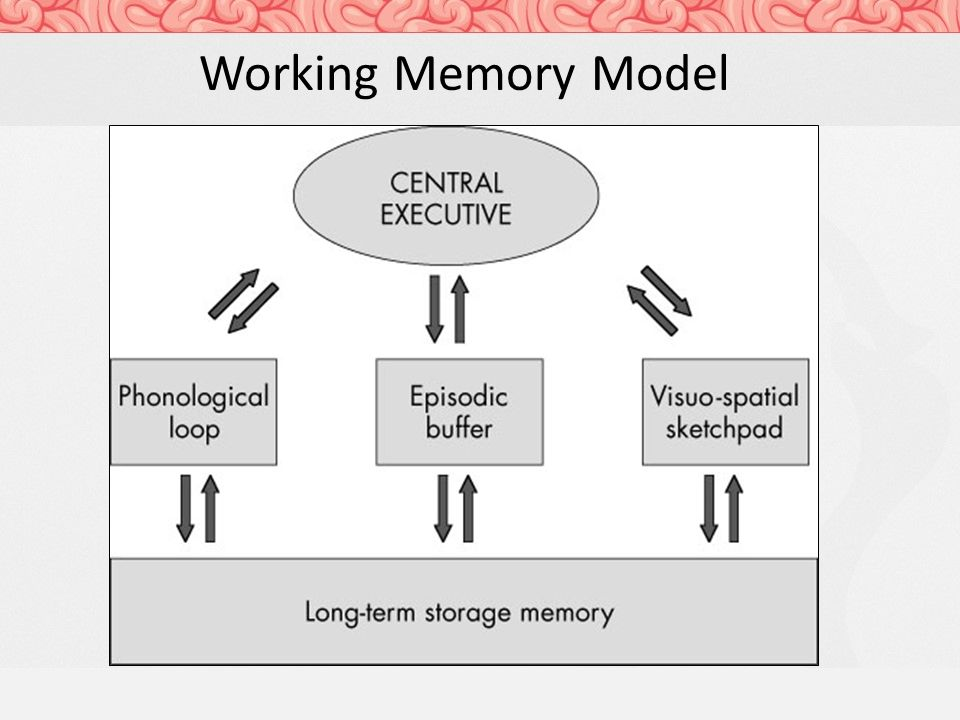 the working memory The relationship between short-term memory and working memory is described differently by various theories, but it is generally acknowledged that the two concepts are distinct working memory is a theoretical framework that refers to structures and processes used for temporarily storing and manipulating information.