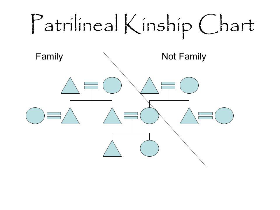 Kinship Diagram Online Trusted Wiring Diagram