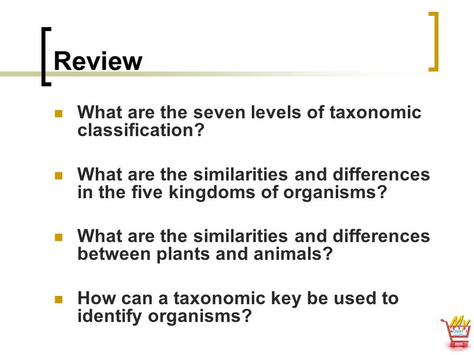 Review What are the seven levels of taxonomic classification