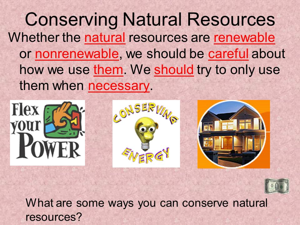 what is preservation of natural resources