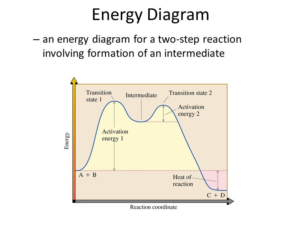 Energy Diagram For A Two Step Exothermic Reaction Diy Wiring