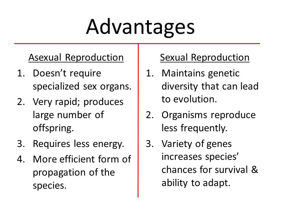 Advantage of sexual reproduction definition