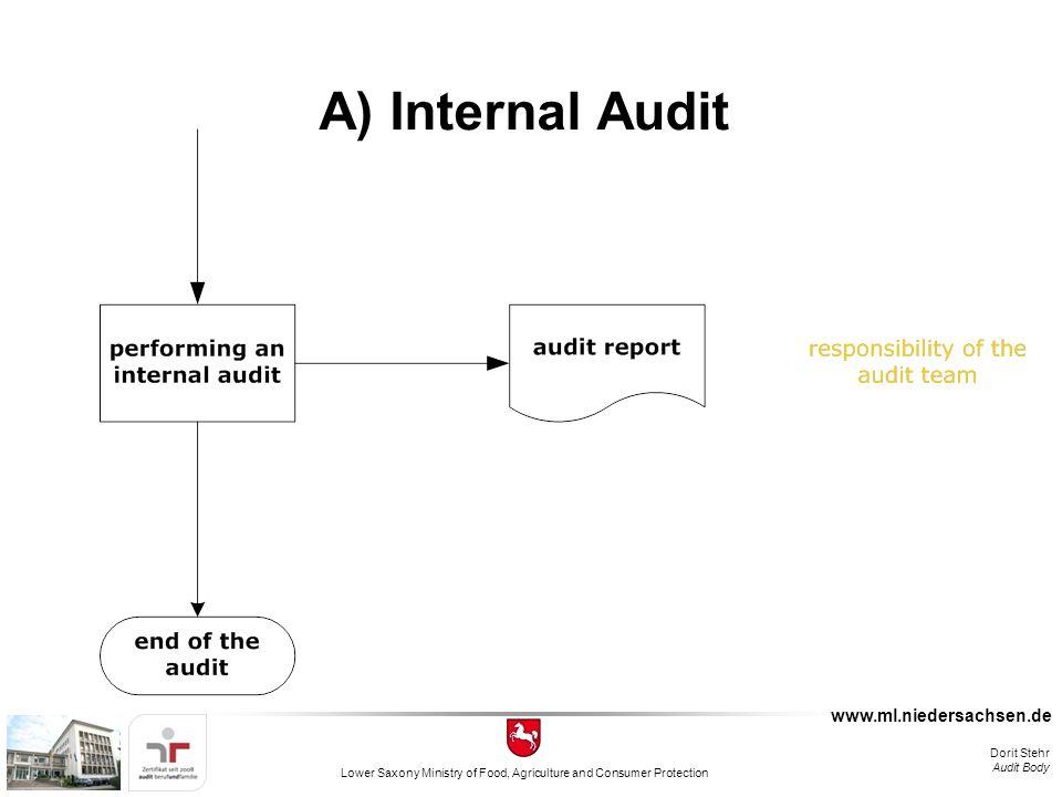 audit fishbone diagram template