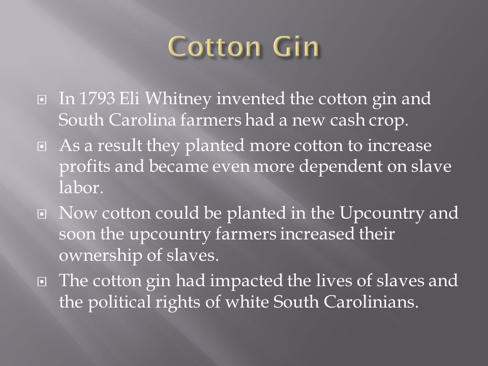 where did eli whitney invent the cotton gin
