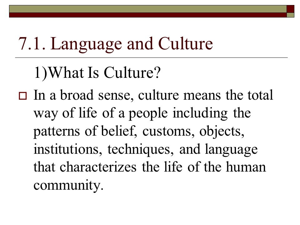 what is the relationship between language tradition and culture