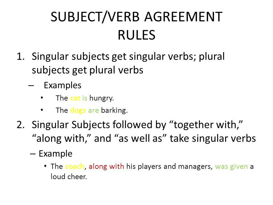 Singular Subject Singular Verb Examples