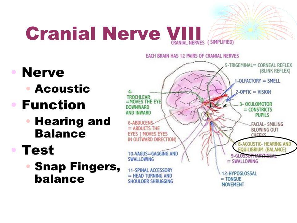 Cranial Nerves Health Occ Ppt Video Online Download