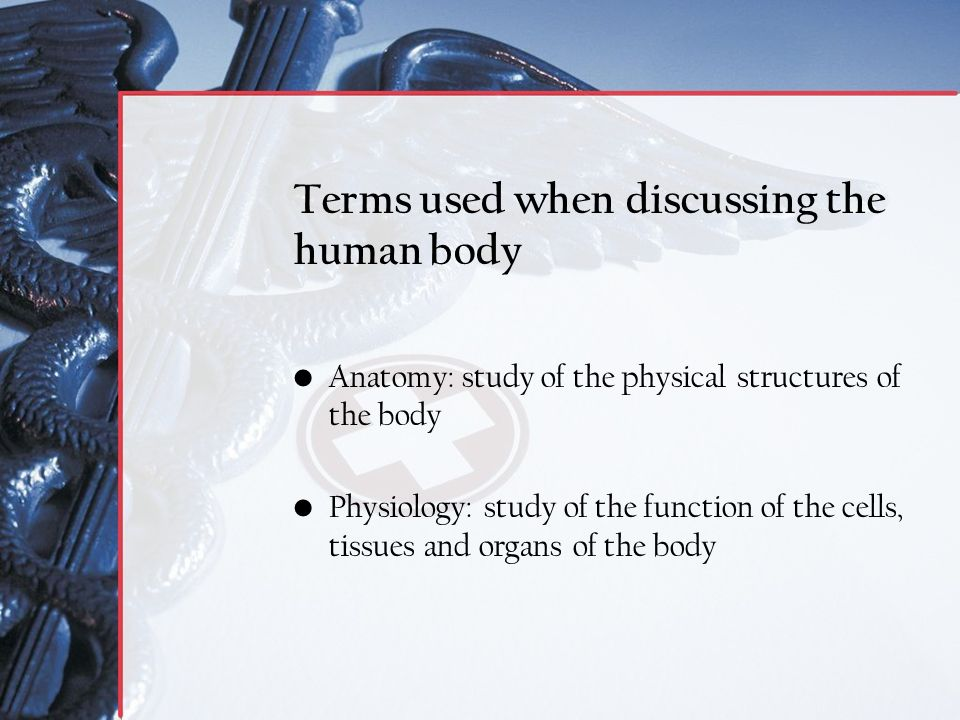 Anatomy and Physiology Introduction - ppt video online download