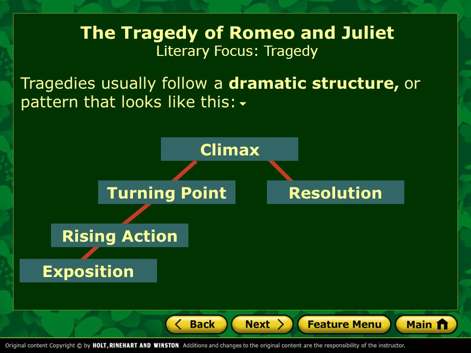The Tragedy Of Romeo And Juliet Literary Focus