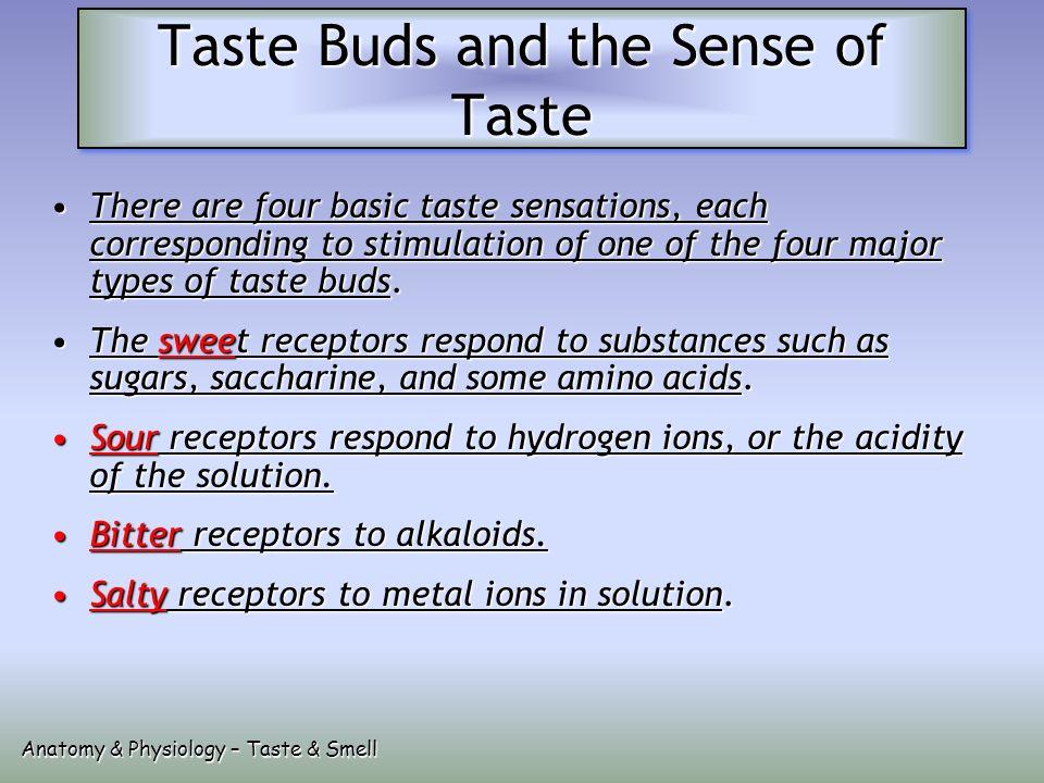 Taste Smell Ppt Video Online Download