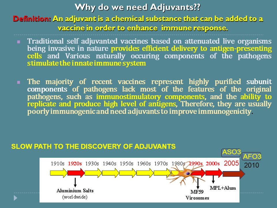 Rational Design of Vaccine Adjuvants Based on Dendritic Cell