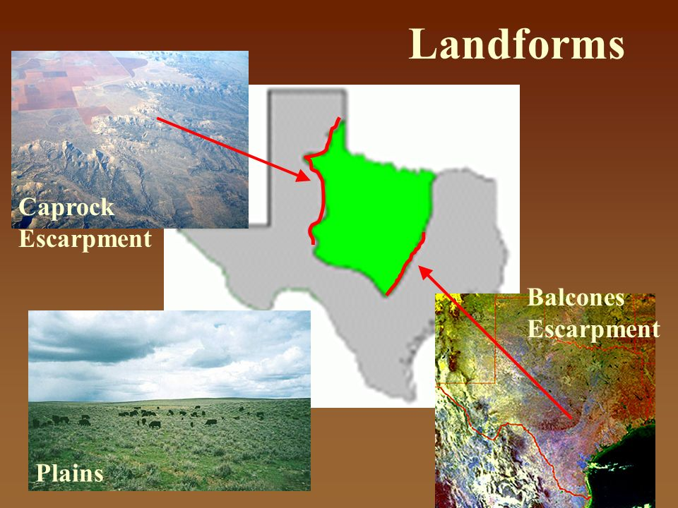 Map Of Texas Landforms.The Four Regions Of Texas Ppt Video Online Download