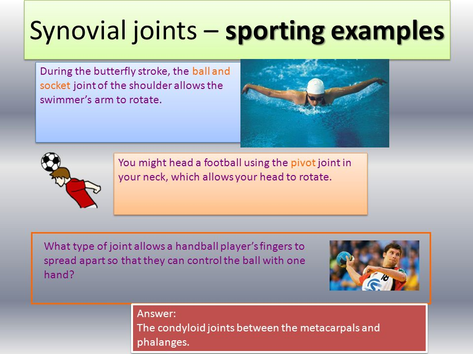 Joints and sporting actions.