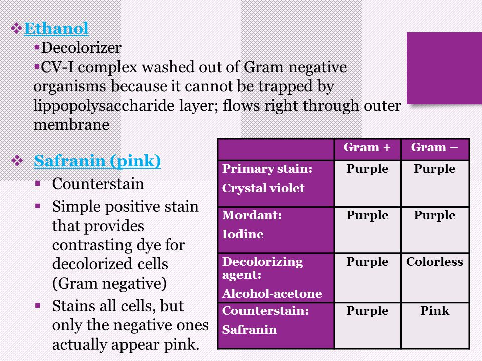 why will old gram positive cells stain gram negative