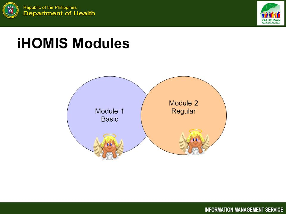 iHOMIS Modules Module 1 Basic Module 2 Regular