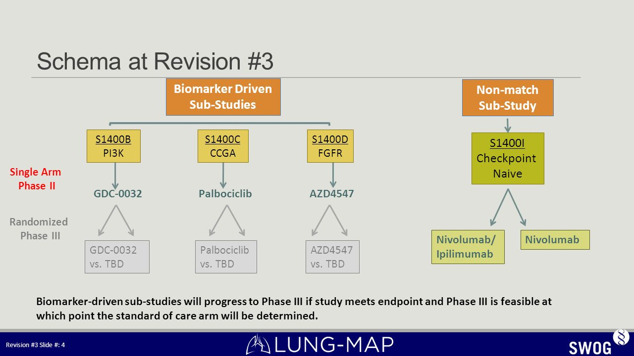 Schema at Revision #3 Biomarker Driven Non-match Sub-Studies Sub-Study