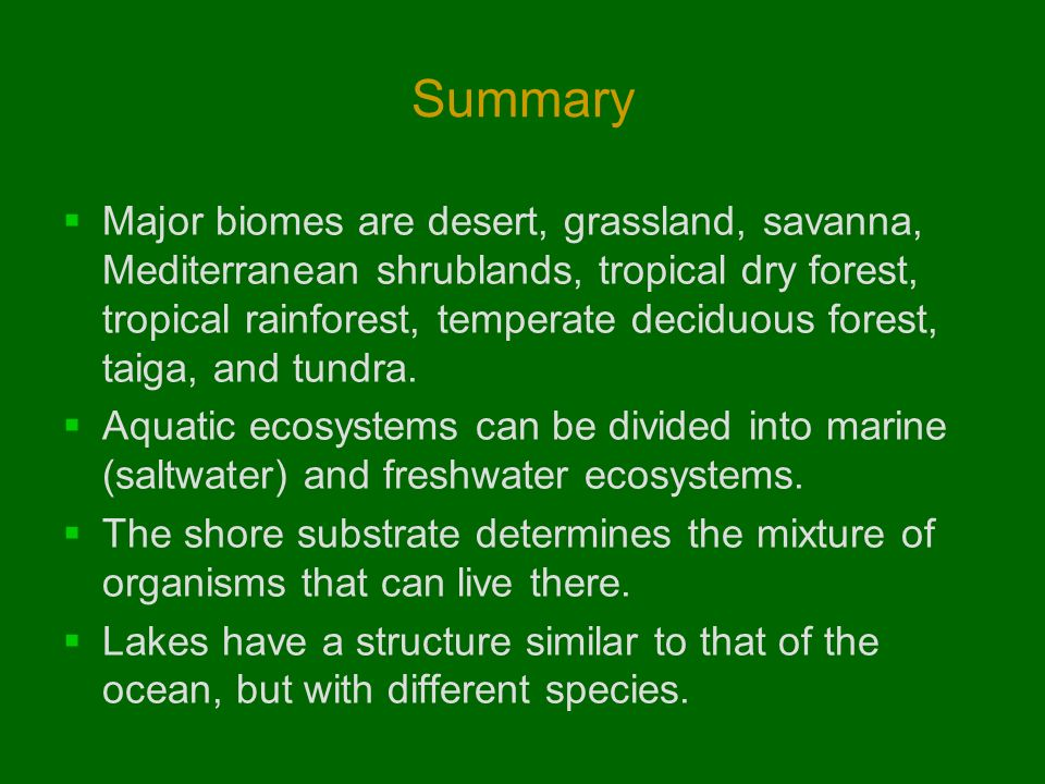 tropical rainforest summary
