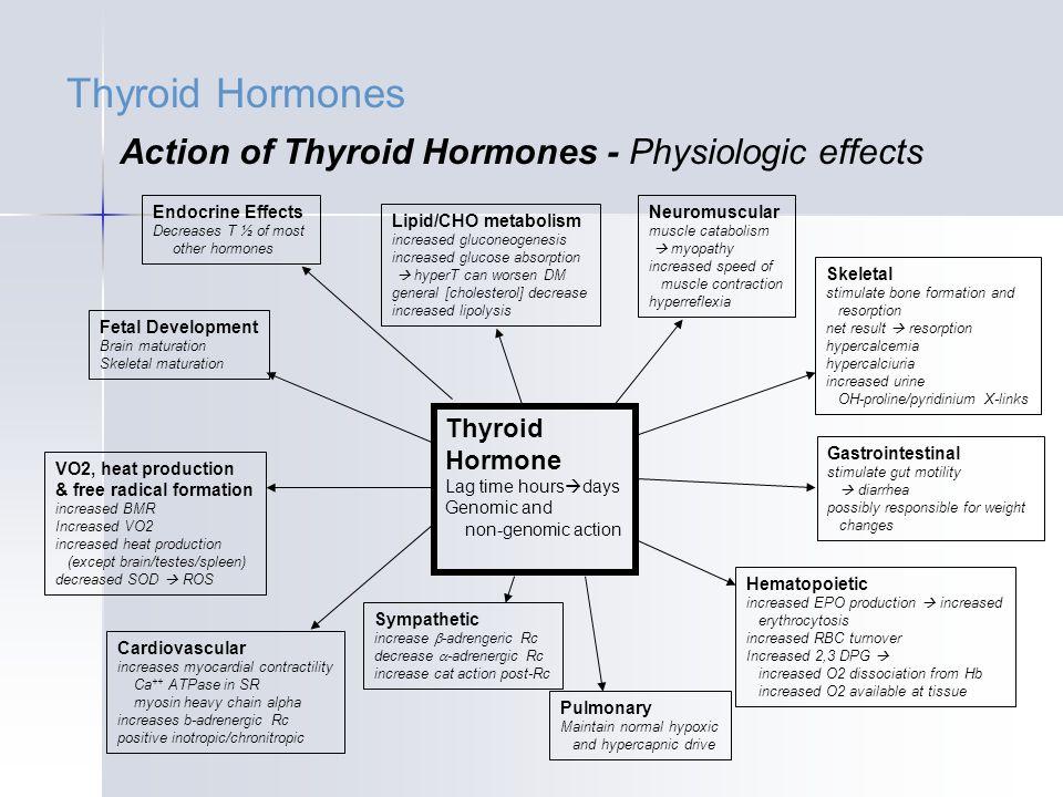 thyroid hormone produced in gut choice image