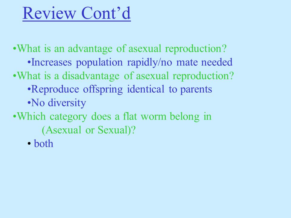 Mollusks asexual reproduction advantages
