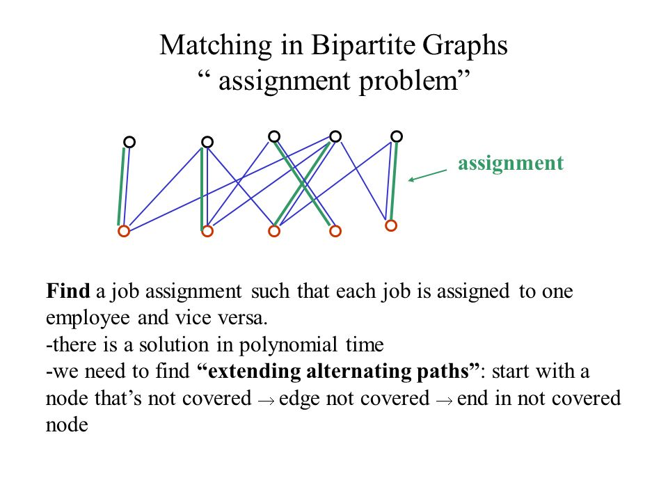 essay about programming business career