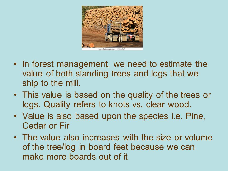 How Much Lumber is on this Log Deck? - ppt download