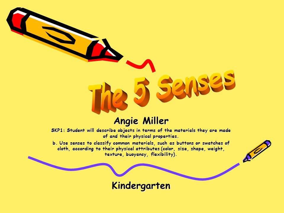 The 5 Senses Angie Miller Kindergarten Ppt Download