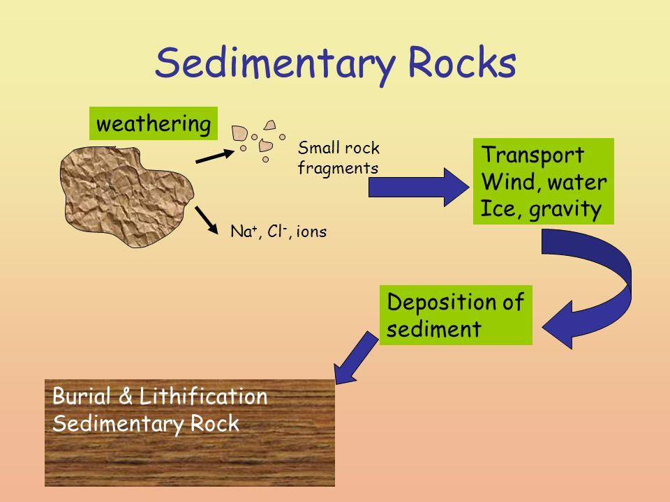 A Diagram Of Sedimentary Rock Data Wiring Diagrams