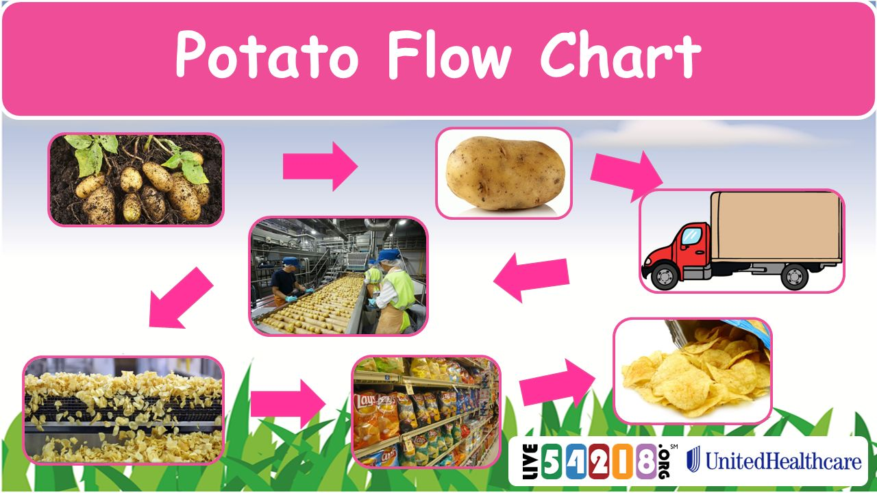 7 Potato Flow Chart Create a flow chart for Potatoes