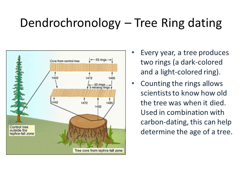 carbon dating tree rings
