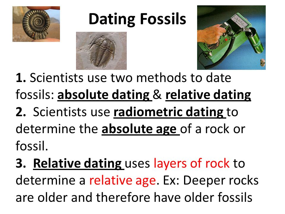 how can scientists use relative dating absolute dating and index fossils to age rocks