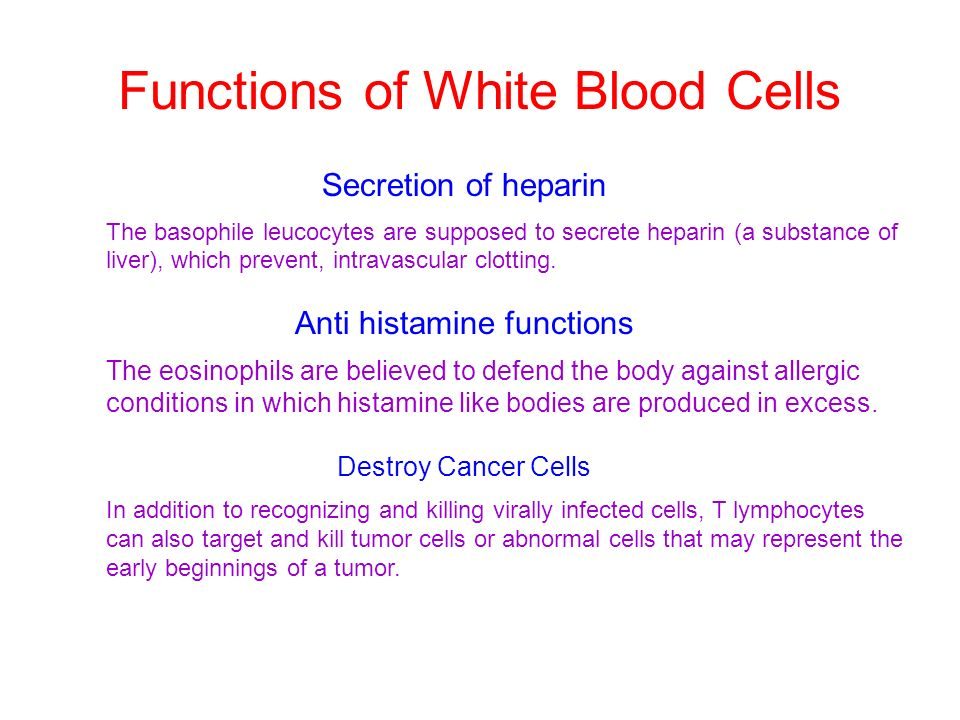 Functions of White Blood Cells