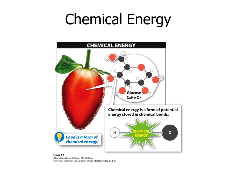 What Type Of Potential Energy Is Stored In Food