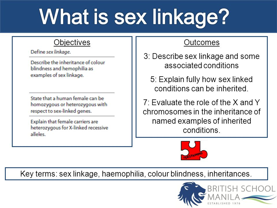 What is sex linkage males have the genotype xy whereas females are 2 what ccuart Gallery