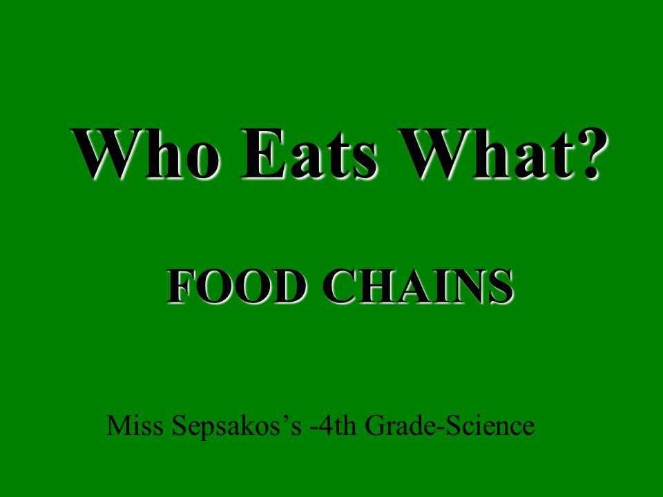 Who Eats What FOOD CHAINS