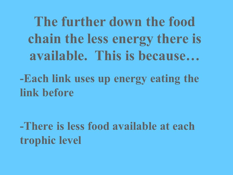 The further down the food chain the less energy there is available