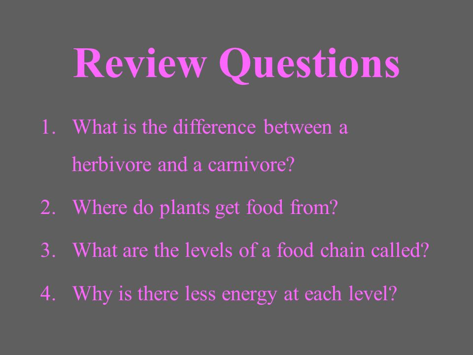 Review Questions What is the difference between a herbivore and a carnivore Where do plants get food from