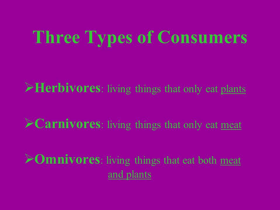 Three Types of Consumers