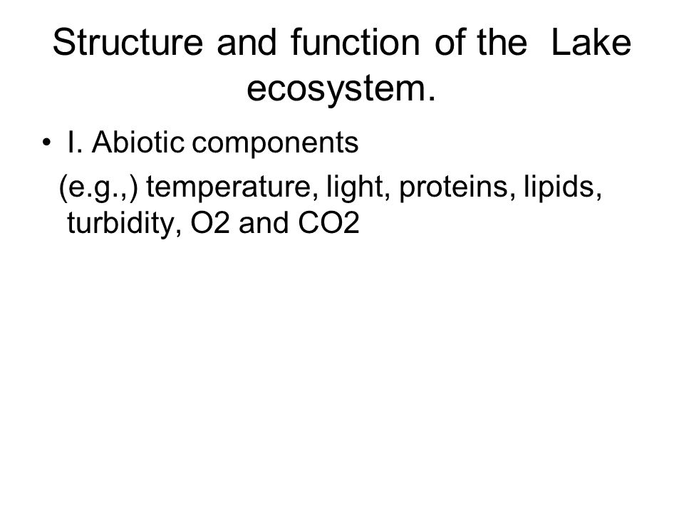 Structure and function of the Lake ecosystem.