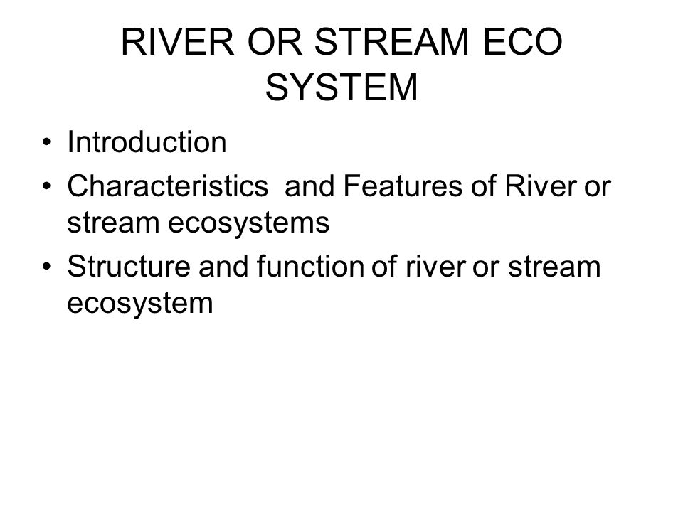 RIVER OR STREAM ECO SYSTEM