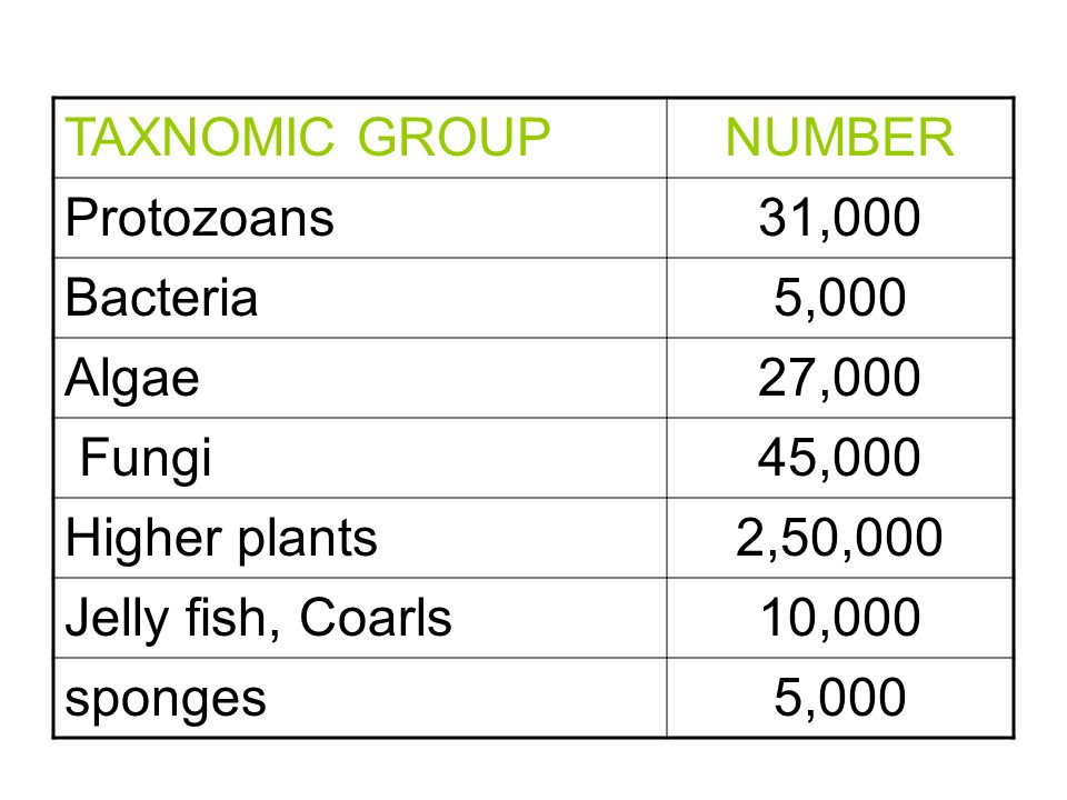 TAXNOMIC GROUP NUMBER. Protozoans. 31,000. Bacteria. 5,000. Algae. 27,000. Fungi. 45,000. Higher plants.