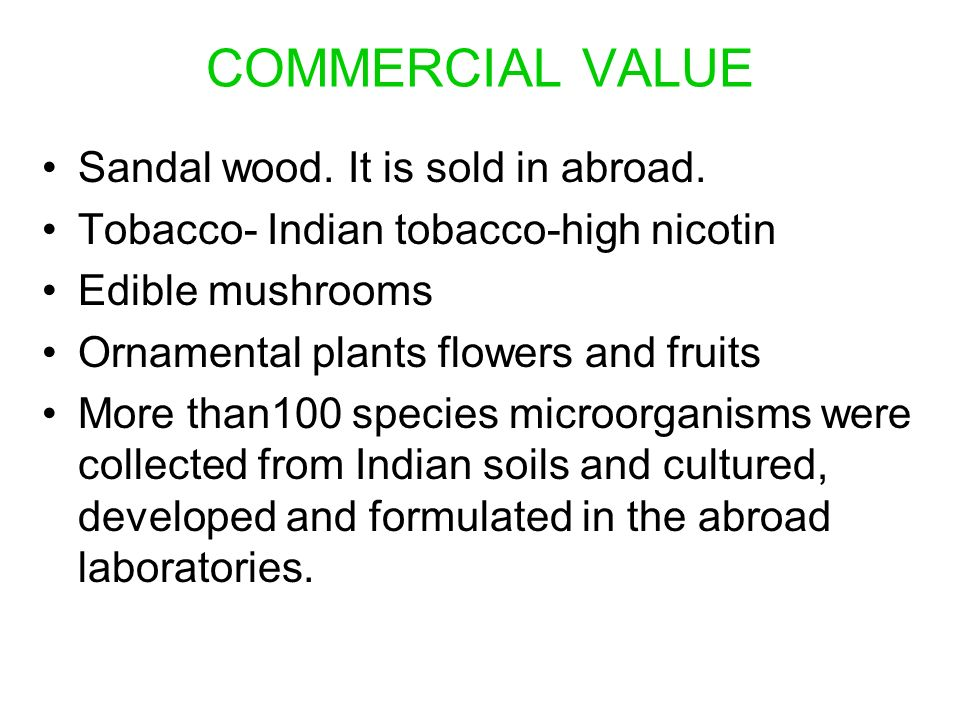 COMMERCIAL VALUE Sandal wood. It is sold in abroad.