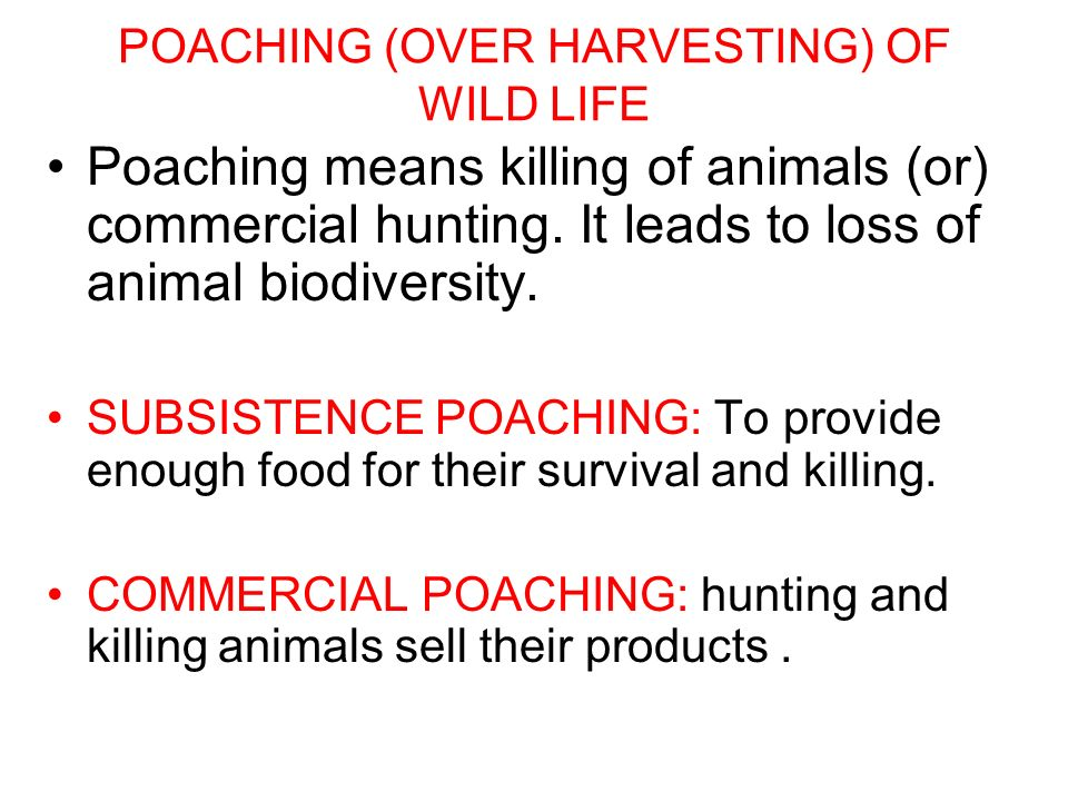POACHING (OVER HARVESTING) OF WILD LIFE