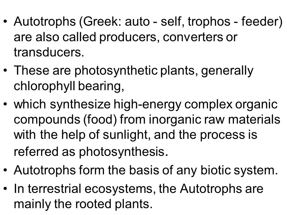 Autotrophs (Greek: auto - self, trophos - feeder) are also called producers, converters or transducers.