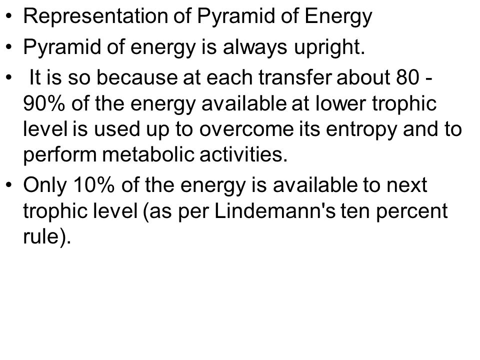Representation of Pyramid of Energy