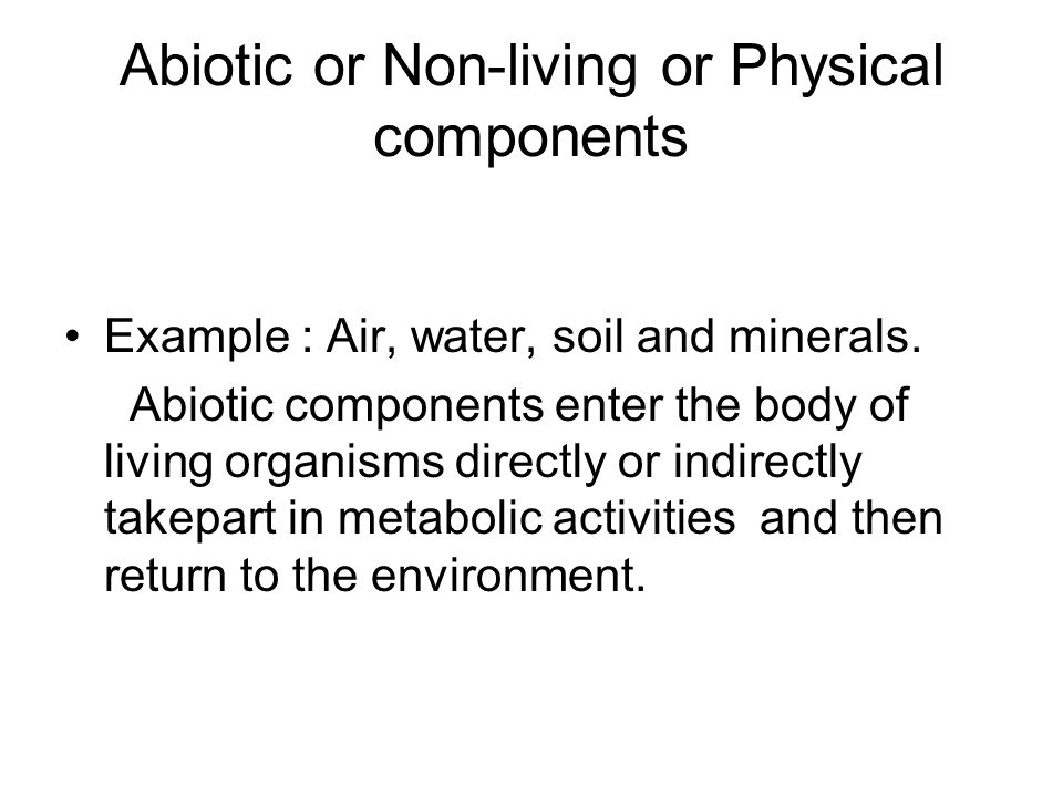 Abiotic or Non-living or Physical components