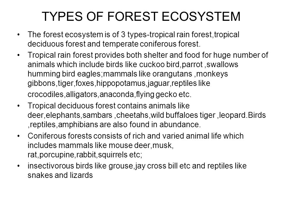 TYPES OF FOREST ECOSYSTEM